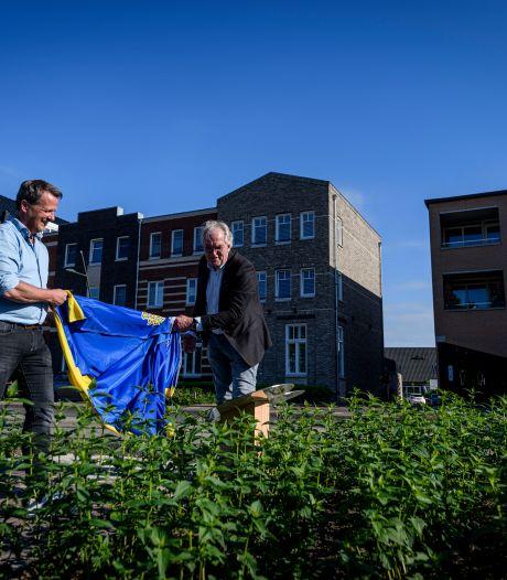 Bloemenpracht op het Molkenboer in Oldenzaal, dankzij Erwin Iepma
