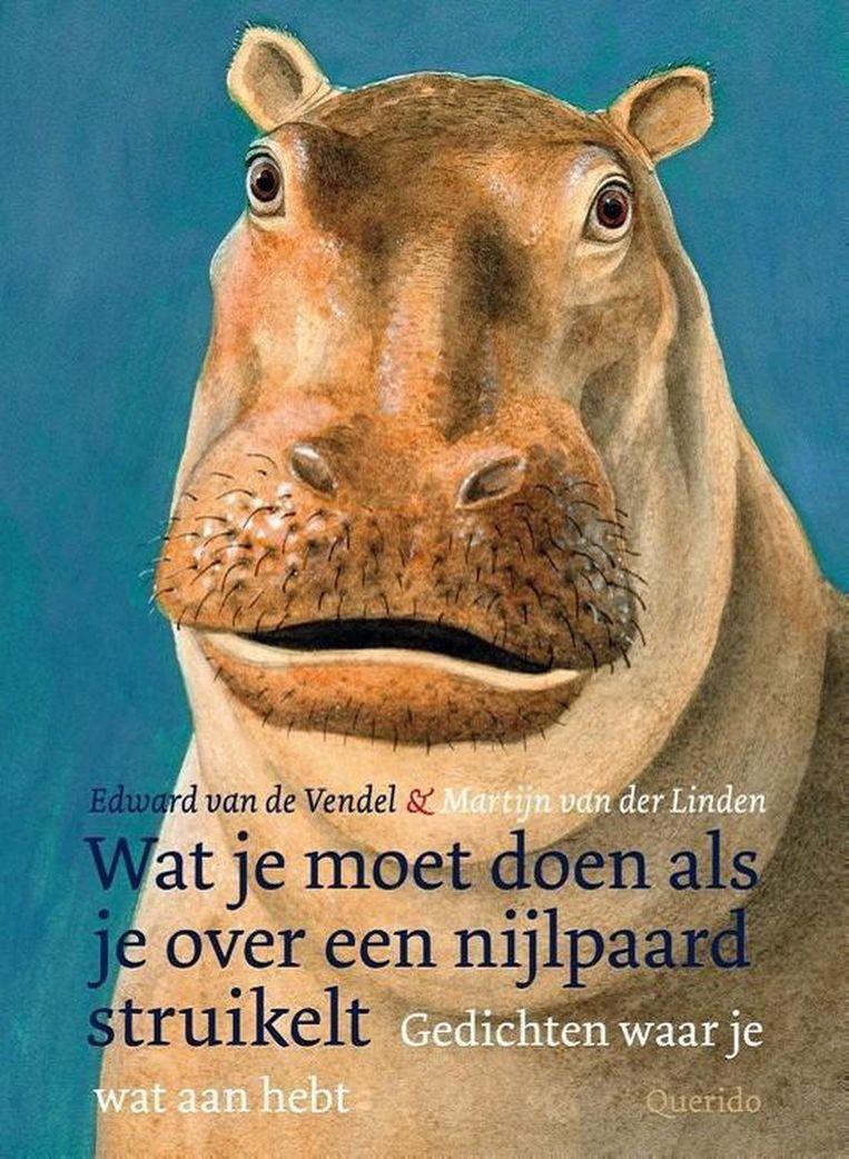 'Wat je moet doen als je over een nijlpaard struikelt' van Edward van de Vendel. Beeld Boekcover