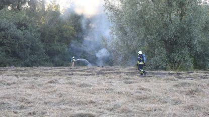 Weiland in brand gestoken door jongeren