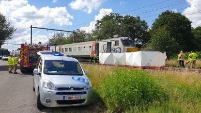 Wagen gegrepen door trein, bestuurder overleden