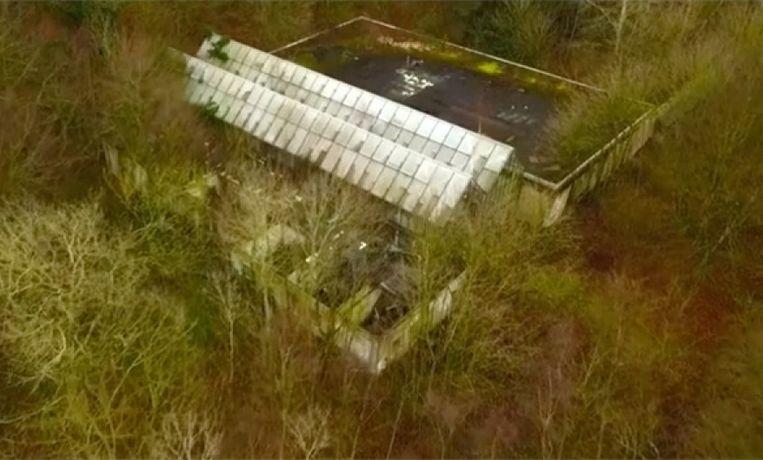 Een screenshot van de video van de restanten van het Dierenpark Wassenaar. Beeld Ralph Denessen