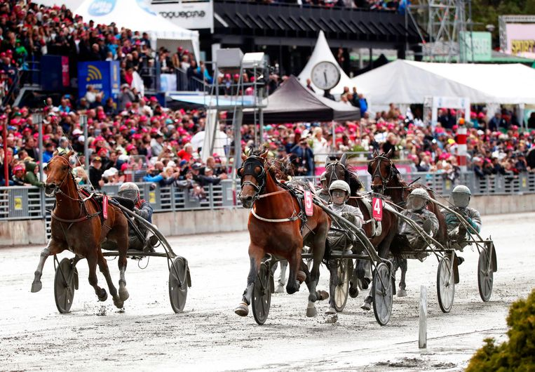 Paardenrace die vorig jaar plaatsvond op een drafbaan in Stockholm. Beeld EPA