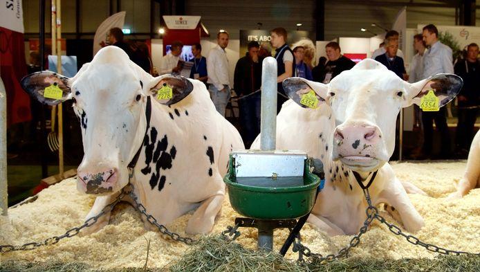 Op de Rundvee & MeschanisatieVakdagen in Hardenberg gaat het om de verzorging van de koe. Maar dit keer is er ook veel aandacht voor de stikstofproblematiek waar de veehouders volop inzitten.