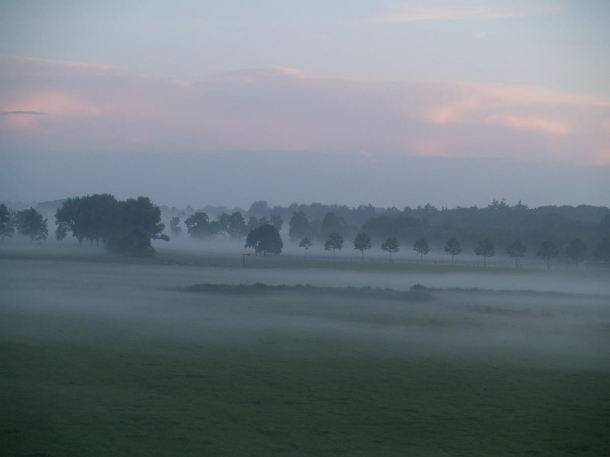Het groene achterland van Leusden.