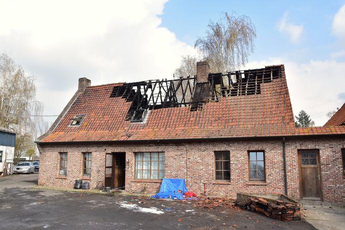 Bij daglicht is de schade aan de getroffen huurwoning pas goed zichtbaar, na de brand op de Drieshoek in Bavikhove.