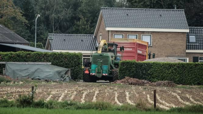 Boeren krijgen last-minute uitstel van minister voor verplichte maisoogst