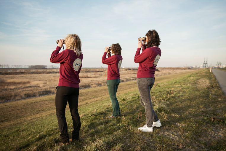 Leden van het vogelspotclubje De Duifkes in actie. Beeld Tim Coppens