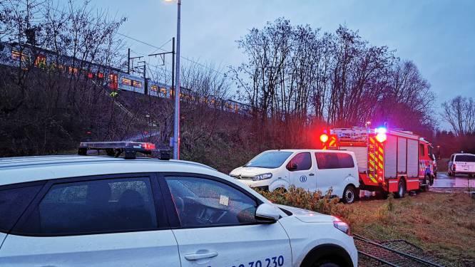 Trein met één wielas van het spoor geraakt in Weerde