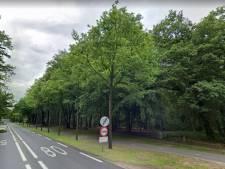 Dit stuk bos langs de Utrechtseweg in Amersfoort is verdwenen en politiek wist van niks: 'Hoe kan dit?'