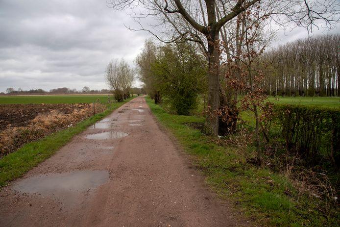 De Kastermeersen wandeling via de Kasterstraat richting Kalkense Meersen.