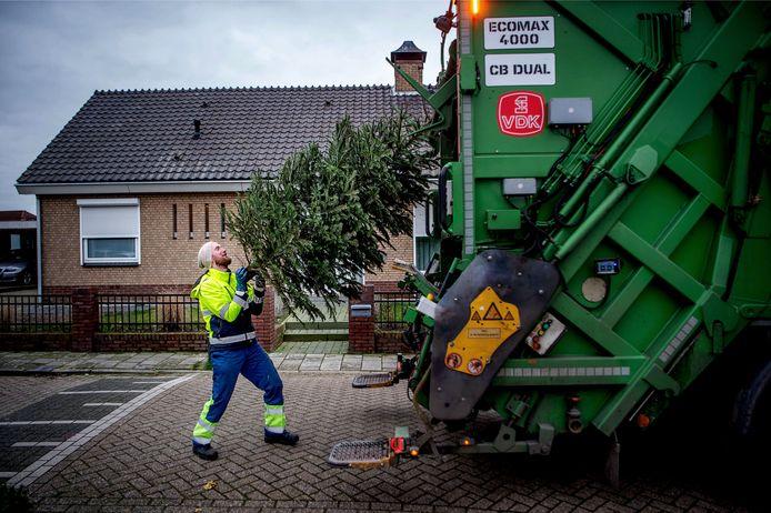 De kerstbomen worden weer overal opgehaald zo ook hier in Horssen, want het is Driekoningen. DAR-medewerker Vincent heeft al aardig wat kerstbomen opgetild vandaag.
