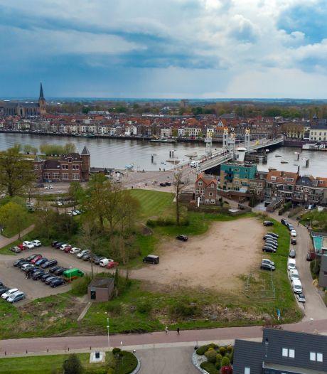 Buurt Buitenwacht Kampen moet alwéér wachten op aanpak wateroverlast, nu door woekerplant