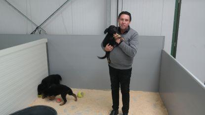 23 verwaarloosde dieren bij voorvechter van dierenrechten én broodfokker in één