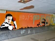 Kunstwerk van overleden thaibokslegende Ramon Dekkers in Breda ondergekalkt