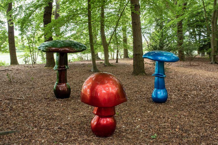 De Zwitserse kunstenaar Sylvie Fleury maakte dit werk, 'Mushrooms' (2005-2006) van fiberglas en autolak. Glitter en glamour zijn vaak haar thema - ze werd bekend met werken die de glossy wereld belichten van de mode en de concumptiecultuur.  Deze paddestoelen gaf ze de naam Schartz Schoch, Blue Kandy en Red Apple - vernoemd naar een parfum.  Beeld Simon Lenskens