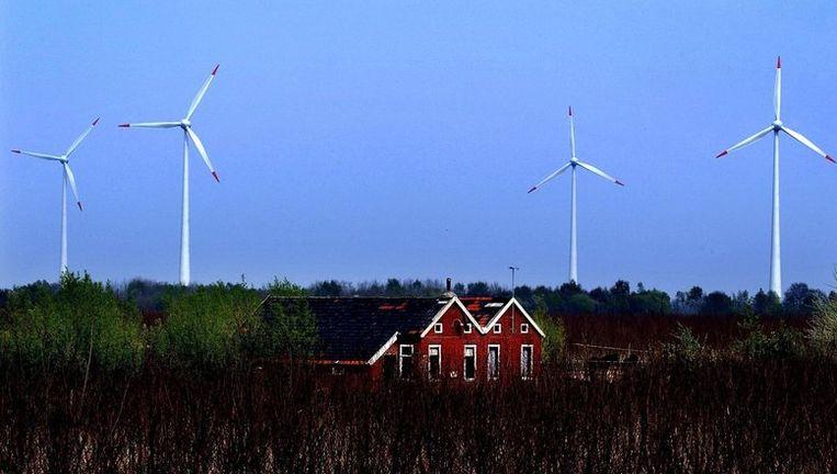 Windmolens in de Groningse gemeente Bellingwedde. Foto: anp Beeld