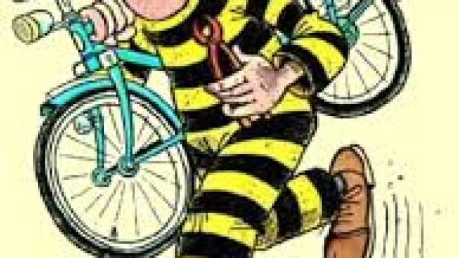 Omstanders vatten fietsendief in de kraag in Holten