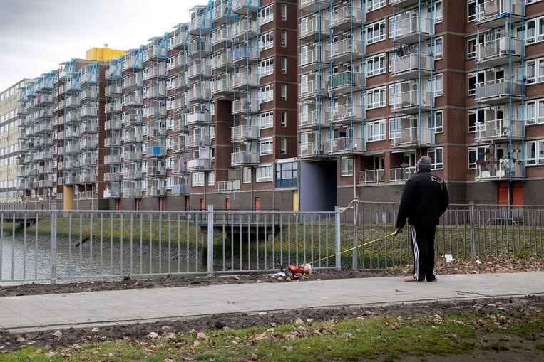 In de Rotterdamse wijk Charlois stijgen de huizenprijzen explosief: vorig jaar zelfs met 55 procent Beeld Hollandse Hoogte / Hans van Rhoon