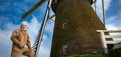 Bronkhorster Molen heeft wind stevig mee in coronatijd: 'Omzet is bijna verdubbeld'