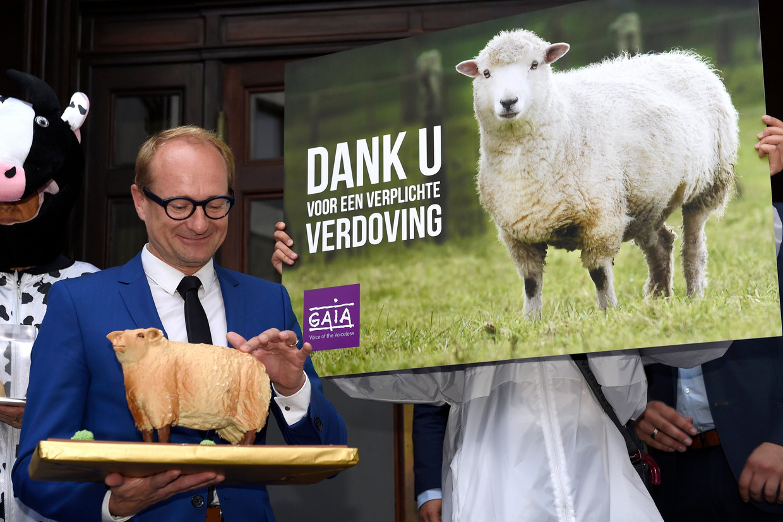 Bij de invoering van het verbod in 2017 kreeg minister van Dierenwelzijn Ben Weyts (N-VA) felicitaties van dierenrechtenorganisatie Gaia.  Beeld Photo News