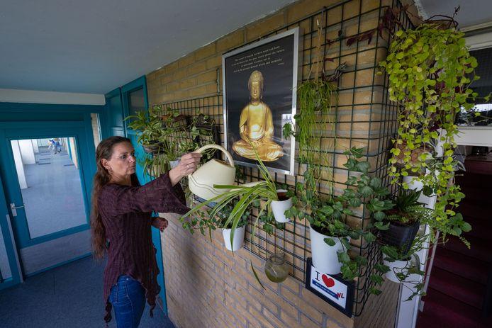 Mary Adema is in april begonnen met een plantenasiel in Kampen.