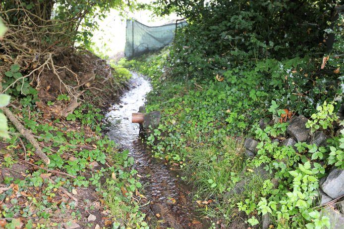 Eén van de vele buizen  waardoor het afvalwater in Lembeek in de natuur terecht komt.