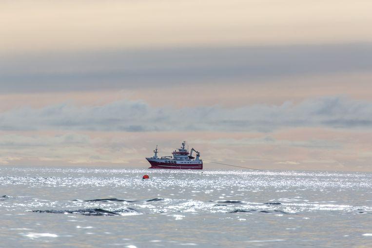De wateren rond de Lofoten zijn rijk aan vis. Vissers en milieubeweging vrezen dat de olie-industrie te dichtbij komt. Beeld Eric Fokke