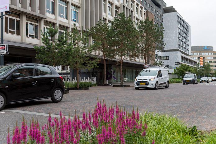 EINDHOVEN ED2020-5127 VESTDIJK:  het groen bij het VDMA-terrein/de Zustersflat, tegenover de ingang van De Heuvel