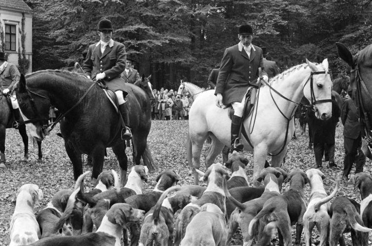 Jagers staan klaar voor de traditionele Sint Hubertus slipjacht in het Utrechtse Leusden, 1967. Beeld anp