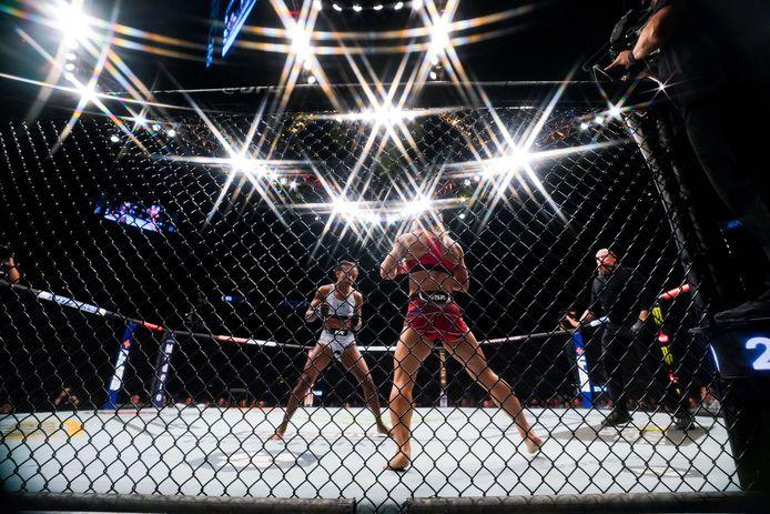 UFC vechters in actie