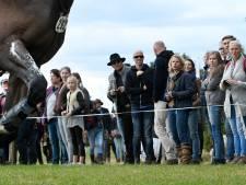 Engelse amazone grote pechvogel Military Boekelo: breekt kuitbeen in de stal