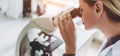 Plus un pays est égalitaire, moins les femmes font des études scientifiques
