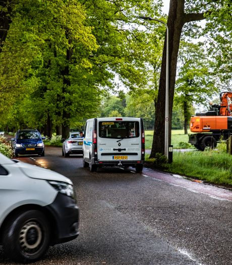 BurgerBelangen luidt alarm over veiligheid sluiproute Mariënheem: dode bomen en overhangende takken