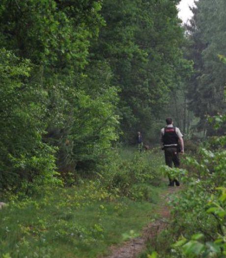 Het regent boetes in natuurgebieden door thuisblijvende vakantievierders, vooral op Utrechtse Heuvelrug