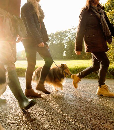 Sportbedrijf springt in op wandelrage met tien nieuwe routes: 'Je komt op plekjes die zelfs Almeloërs niet kennen'