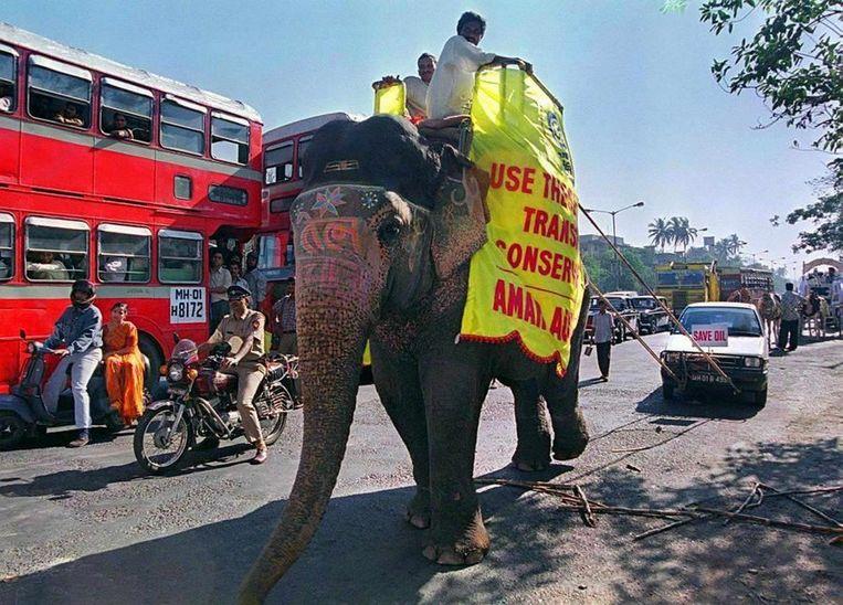 Een olifant trekt een auto in een processie waarin gepleit wordt voor minder gebruik van brandstof. Beeld afp