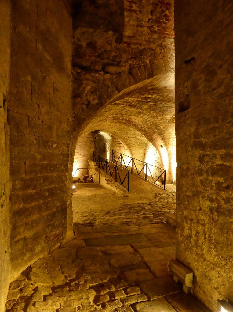 De ruïnes van het Coudenbergpaleis Beeld Reino Baptista