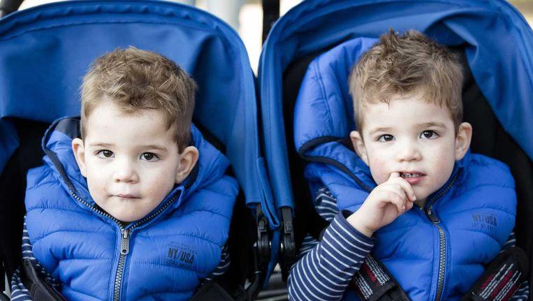 Een tweeling tijdens de meerlingendag in Dierenpark Amersfoort. (De kinderen op de foto komen niet voor in het verhaal) Beeld anp
