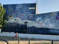 Graffiti moet van de muur omdat architect dat eist, oudere bewoners balen: 'Dit mag niet verloren gaan'
