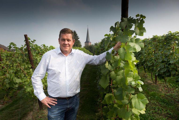 Daniel Medarts op het domein Kitsberg. Zijn wijn won een gouden medaille op de 'Wijnkeuring van de Lage Landen'.