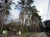 """Op huizenjacht in Rotselaar: """"De thuisbasis van Rock Werchter neemt stilaan stedelijke woningprijzen over"""""""