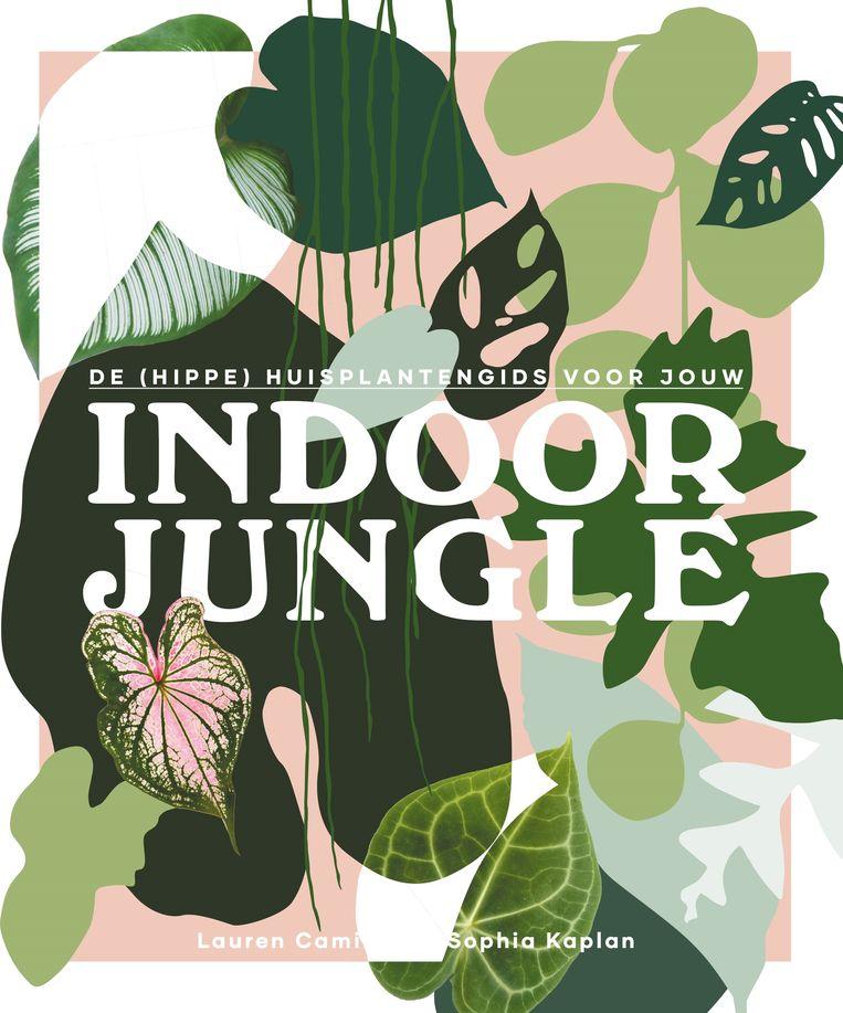 Indoor Jungle Beeld RV