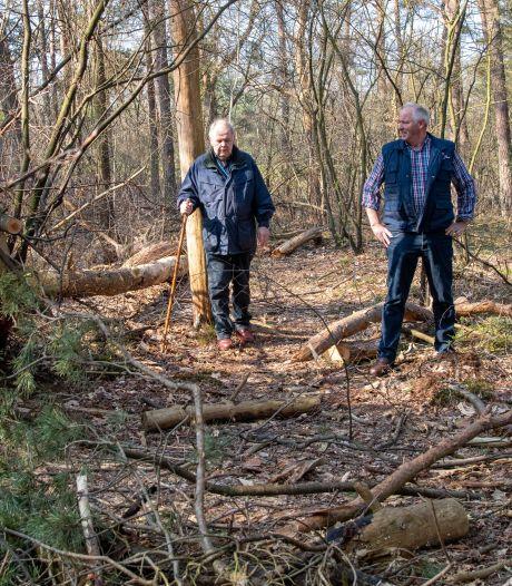 Vraagtekens bij kaalslag in Nunspeets gemeentebos: 'Moeten juist zuinig zijn op onze natuur'