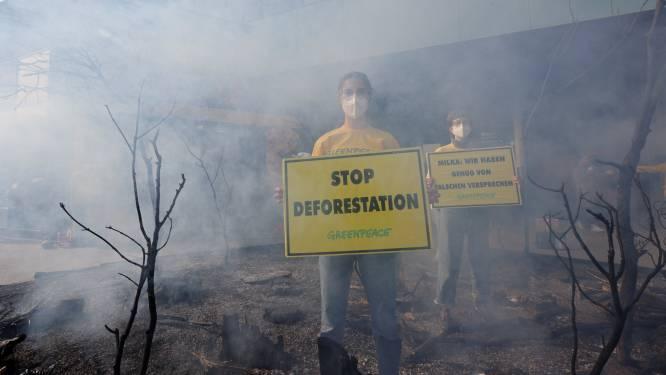 Ontbossing in Amazonewoud breekt record voor maand april