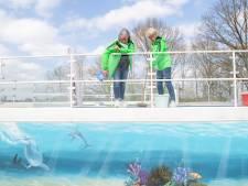 Zwembad in Ommen eindelijk weer open, maar regels blijven strikt: 'Wel baantjes, geen bommetjes'