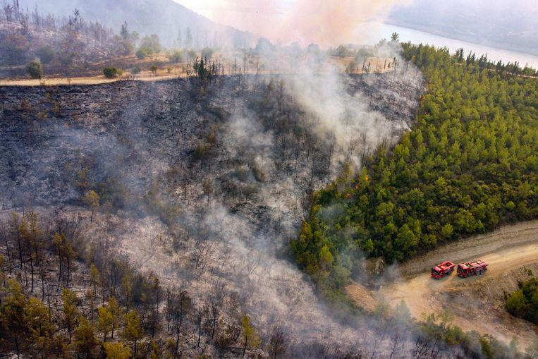 Luchtfoto van brandweerwagens op de weg, terwijl het vuur dooft.  Beeld AFP