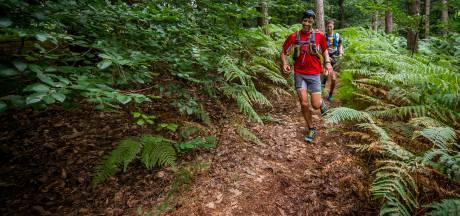 Een trailrun zit altijd vol verrassingen: trailrun tips & tricks