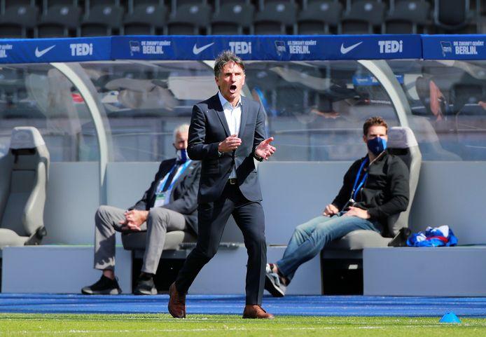 Hertha-trainer Labbadia juicht.