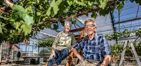 Niet iedereen stopt na pensioen: 'Oude bazen' gaan gewoon elke dag naar de kas