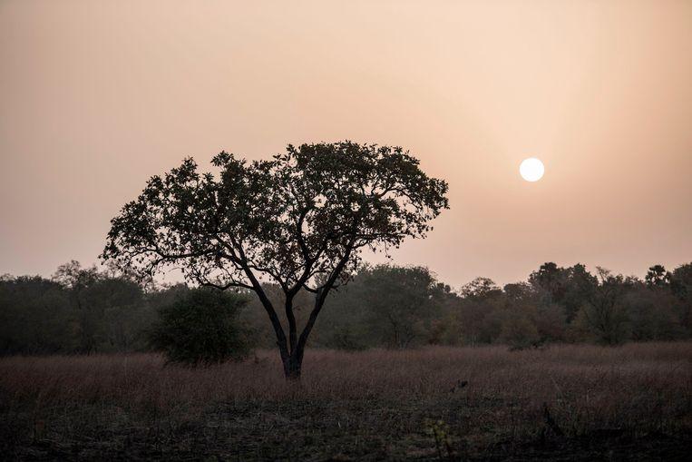 De twee Fransen en hun gids verdwenen in het Pendjari National Park.